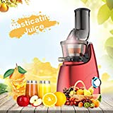 Elechomes CJ201 Slow Masticating Juicer Extractor