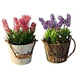 Homyl 2 Pieces Artificial Wooden Potted Plastic Lavender Flowers Plants Greenery Mini Bonsai Indoor Outdoor Floral Decor