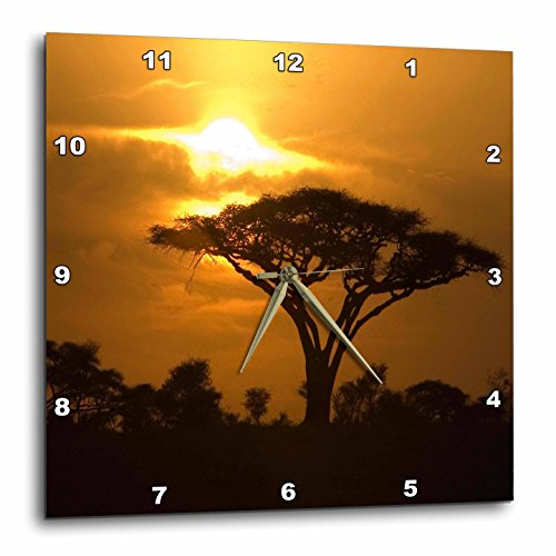 3dRose dpp_173294_3 Thorn Acacia Umbrella Tree on African Plains at Sunset Tropical Night Scene-Wall Clock, 15 by 15-Inch - African Plains Wall