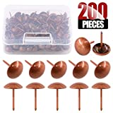 Hilitchi 200-Pieces 7/16''(11mm) Antique Tacks Nail Pins Upholstery Tacks Furniture Thumb Tack Pins Assortment Kit (Red Copper)