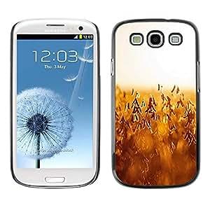 FECELL CITY // Duro Decorativo Carcasa de Teléfono PC Caso Funda / Hard Case Cover forSamsung Galaxy S3 // Autumn harvest