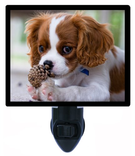 Dog Night Light, Cavalier King Charles Spaniel Puppy, Pet LED Night Light