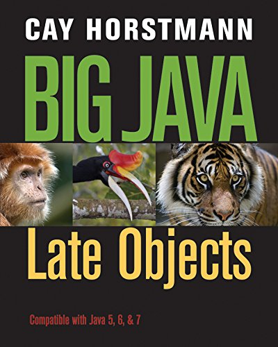 Big Java: Late Objects 1e + WileyPLUS Registration Card ()