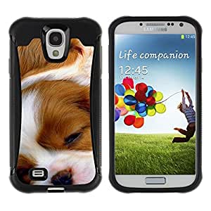 Suave TPU GEL Carcasa Funda Silicona Blando Estuche Caso de protección (para) Samsung Galaxy S4 IV I9500 / CECELL Phone case / / Cavalier King Charles Spaniel Puppy /