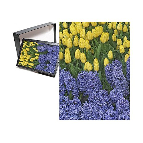 Media Storehouse 252 Piece Puzzle of USA, Nevada, Las Vegas. Hyacinth and Yellow Tulips in Garden (13970659)
