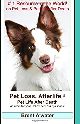 Pet Loss, Afterlife & Pet Life After Death: Answers for your Heart's Pet Loss Questions!