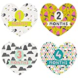Lucy Darling Monthly Baby Stickers - Baby Girl - Little Love - Months 1-12