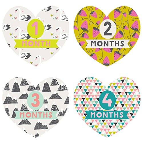 Lucy Darling Monthly Baby Stickers - Baby Girl - Little Love - Months 1-12 by Lucy Darling