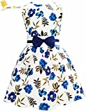 7 yr old girl clothes - Toddler Girls Sleeveless Vintage Print Swing Party Dresses For Girl's,Blue White Floral,8T/7-8 Years
