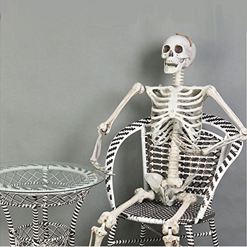 5.5 Feet Halloween Prop Life Size Human Skull Skeleton Haunted Hoe (The Saddle Rack Halloween)