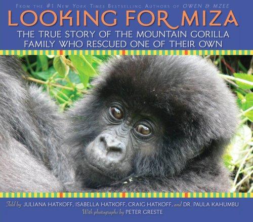 Looking For Miza pdf