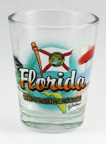 Florida Sunshine State Elements Shot Glass