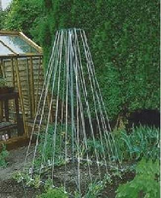 IDEAL FOR GROWING BEANS AND PEAS COMPLETE KIT 2 X PARASENE WESLON GRO-POLES