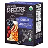 Organic Slammers Pureed SuperFood Snack Greek Yogurt CHILL`N Filled With Goodness (1-BOX) (4-3.17 OZ POUCHES)