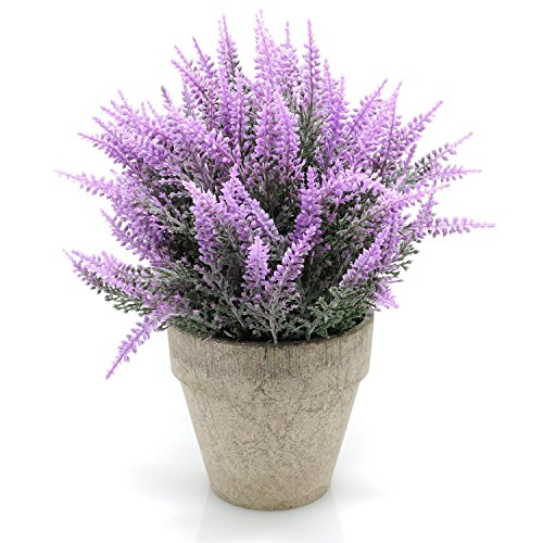 Velener Mini Artificial Flowers Provence Lavender Arrangements in Pots for Home Decor (Purple) by Velener