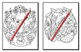 Summer Coloring Book: An Adult Coloring Book with