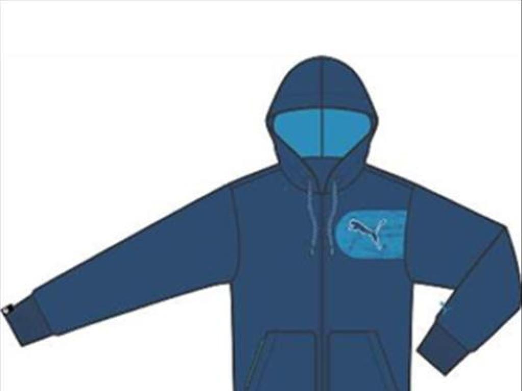 Puma Herren Freizeit- und Sportwear Sweatshirt Graphic Hooded JKT