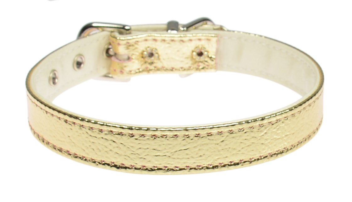 gold Size 10 gold Size 10 Evans Collars 1 2  Collar, Size 10, Vinyl, gold