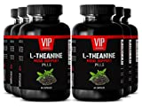 Natural green tea supplements - L-THEANINE MOOD SUPPORT - Improve brain performance - 6 Bottles 360 capsules