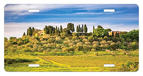 Lunarable Tuscan License Plate, Green Field Tranquil Landscape Retro Stone Toscana Farmhouse Vineyard, High Gloss Aluminum Novelty Plate, 5.88 L X 11.88 W Inches, Blue Green and Khaki