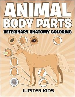 animal body parts veterinary anatomy coloring jupiter kids 9781683051275 amazoncom books - Veterinary Anatomy Coloring Book