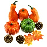 Gresorth Decoration Artificial MINI Pumpkins + Fake Maple Leaves Collection