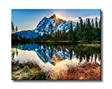 Shukqueen DIY Oil Painting, Adult's Paint by Number Kits, Acrylic Painting Wild Sunset 16X20 Inch (Framed Canvas)