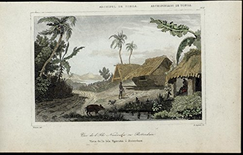 Rotterdam Island Tonga Thatched Huts Pig scarce 1863 old hand color view print