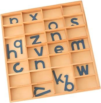 B Blesiya Montessori Caja de Alfabetos Móviles de Madera Letras ...