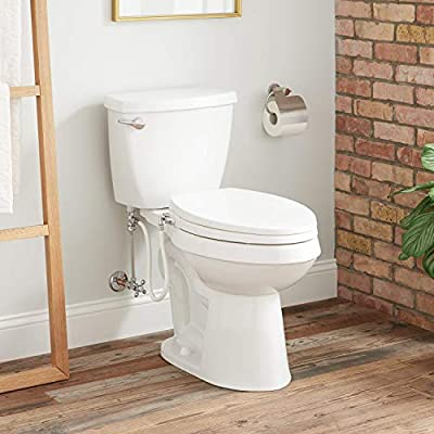 Signature Hardware Auden 1.28 GPF Two Piece Elongated Chair Height Toilet - Bidet Seat Included
