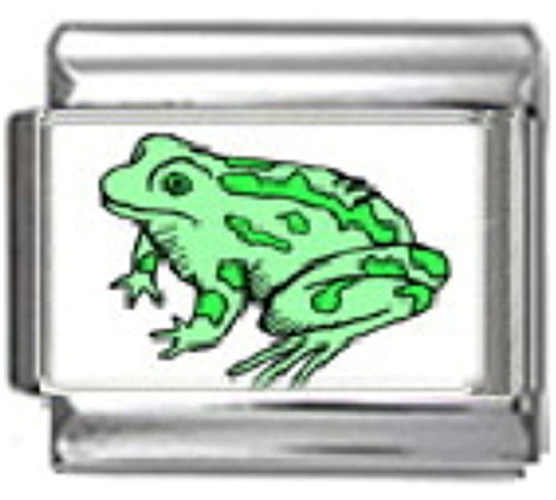 (Stylysh Charms Frog Green Amphibian Photo Italian 9mm Link AN041)