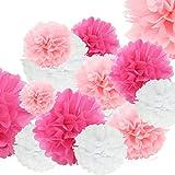 Pom Poms Tissue Balls, Paper Flowers Balls for Wedding Party Outdoor Decoration Premium Tissue Paper Pom Pom Flowers Craft Kit 18 Pcs