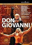 Mozart: Don Giovanni [DVD] [2008] [2010]