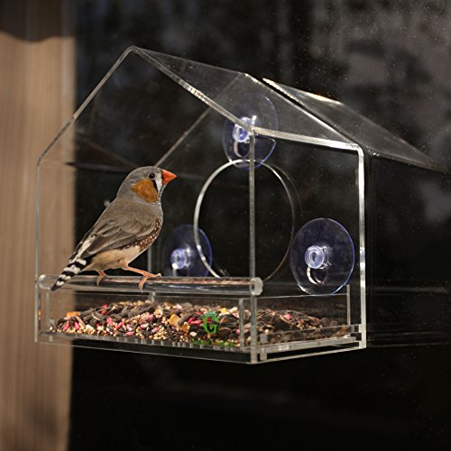 Gamgee's Garden Acrylic Window Bird Feeder with Removable Sliding Tray and Suction Cups (Bird Window Feeder Clear)