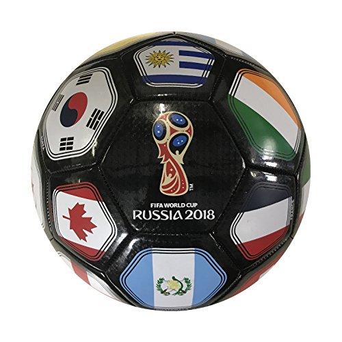 Icon Sports FIFA 2018 World Cup Russia Souvenir Soccer Ball (Soccer Ball Cup)