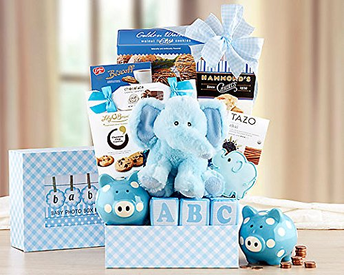Gourmet Foods Gift Baskets, Oh Baby, Surprise Mom and Her New Baby Boy with This Precious Gift. The Plush Baby Elephant and Soft, Cloth Blocks Are Perfect for Small Hands. A Piggy Bank, Lily O'brien's Chocolate Chip Cookies, Peanut Crunch, - Dip Walnut Mix