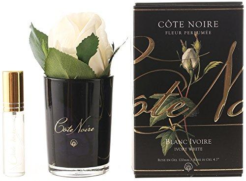 Costa Noire avorio bianco profumato naturale touch bocciolo di rosa in vaso nero con profumo spray Côte Noire GMRB41