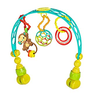 Add this versatile arch to baby's stroller and suddenly strolling and shopping becomes an adventure! The Flex 'n Go Activity Arch from Oball easily attaches to almost any stroller and keeps baby entertained with an easy-to-grasp Oball, a lion rattle,...
