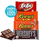 HERSHEY'S Assorted Halloween Chocolate Candy Bars, 20 Count Variety Gift (HERSHEY'S, KIT KAT, REESE's & REESE'S Pieces)