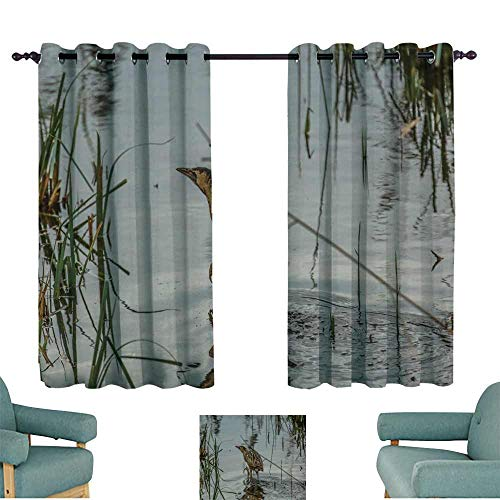 (WinfreyDecor Printed Curtain Bittern Walking Across The Reed Relief Channel Noise Reducing 63