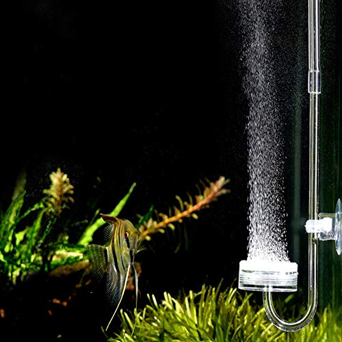 Dacheng Acrylic Nano Co2 Diffuser Check Valve and U-Shape Connecting Tube for Aquarium Up to 79 Gallons Planted Tanks