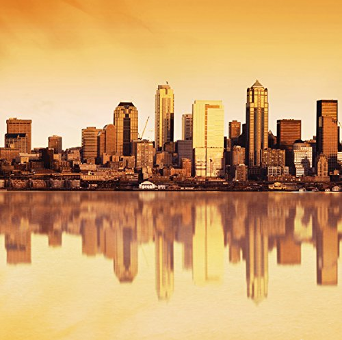 JP London SQM2214PS Peel and Stick Removable Wall Decal Sticker Mural The Windy City Chicago Skyline At 6' High By 6' -