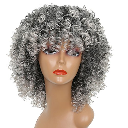 Gray Hair Wigs (MISSWIG Kinky Curly Wigs Female Synthetic Wig Gray Short Afro Full Wigs for Black Women)