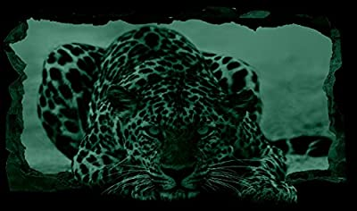 Startonight 3D Mural Wall Art Photo Decor Blue Eyes Leopard Amazing Dual View Surprise Large 32.28 inch By 59.06 inch Wall Mural Wallpaper for Living or Bedroom Animal Collection Wall Art