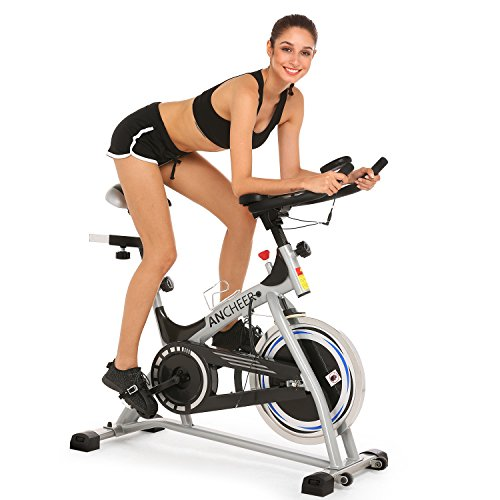 Belt Drive Indoor Cycling Bike, Spin Bike (Sliver)