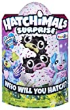 Toys : Hatchimals Surprise Twin - Puppadee  (Colors/Styles Vary)