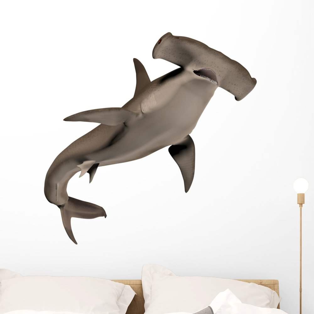Wallmonkeys Hammerhead Shark Wall Decal Peel and Stick Graphic WM160197 (36 in H x 36 in W)