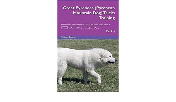 Pyrenean Mountain Dog Tricks Training Great Pyrenees Great Pyrenees Pyrenean