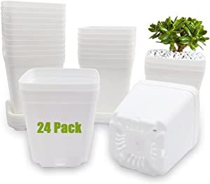 24 Pcs 3 Inch White Square Plant Pots,Plastic Nursery Planter with Saucer,Seedling Nursery Transplanting Planter Container for Succulents,Cactus,Herbs,Balcony Decor,Office,Indoor Outdoor