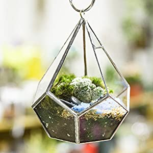 5.3 inches Silver Handmade Wall Hanging Geometric Glass Terrarium Window Sill Balcony Succulent plants Planter Small Indoor Decoration Flower Pot Vase Centerpiece for Wedding Coffee Table (No Plants) 3